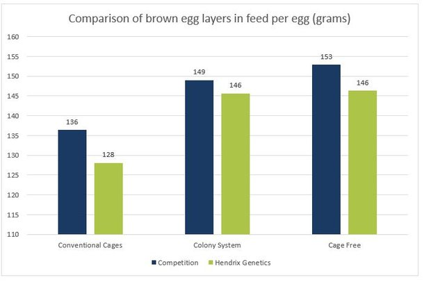 3b graph brown feed per egg.jpg