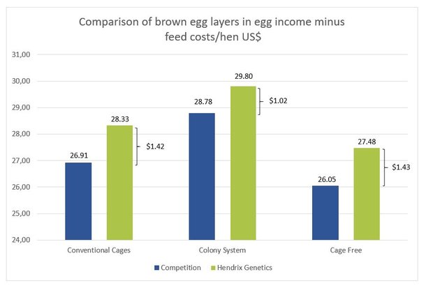 5b graph brown egg income.jpg