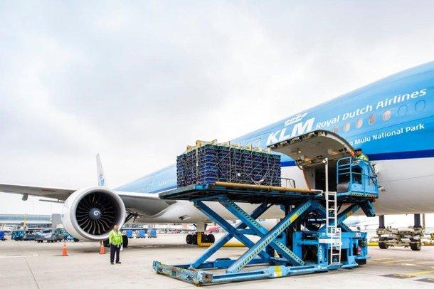 isa export airplane 2