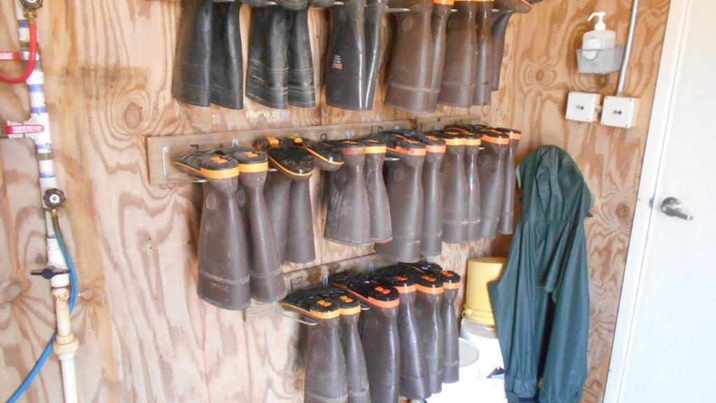 Biosecurity boot rack