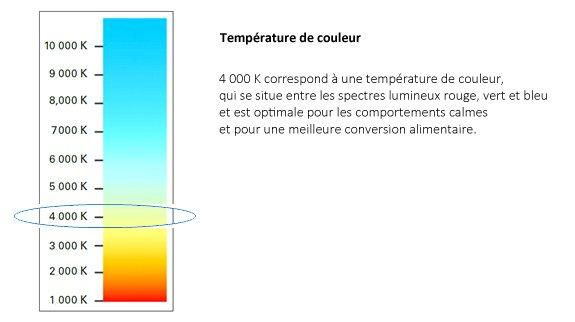 Colour temperature graph LED FR