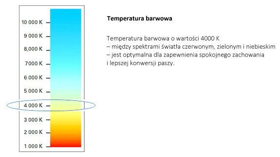 LED colour temperature PL