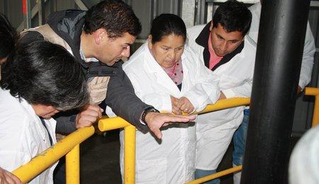 Chile Community 4