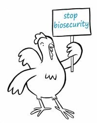 Chicken stop biosecurity