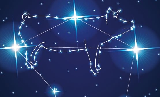 Hypor Libra Star constellation