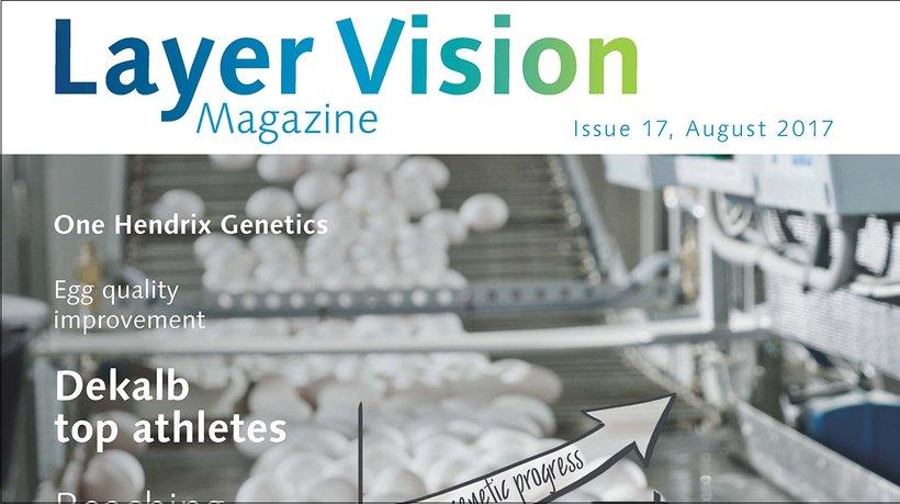 layervision