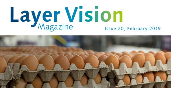 Layer Vision Issue 20 - English