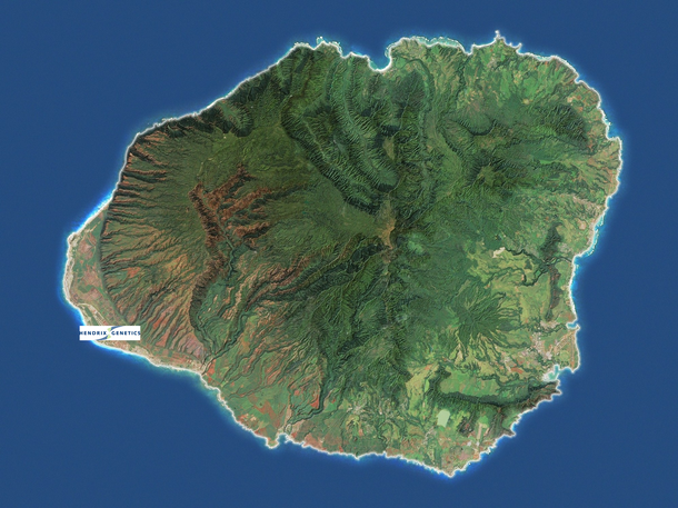 Kona bay location