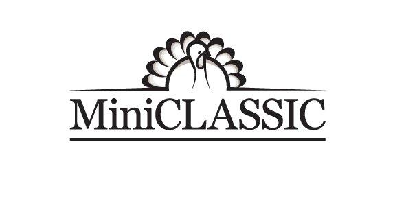 MiniClassic Logo 2