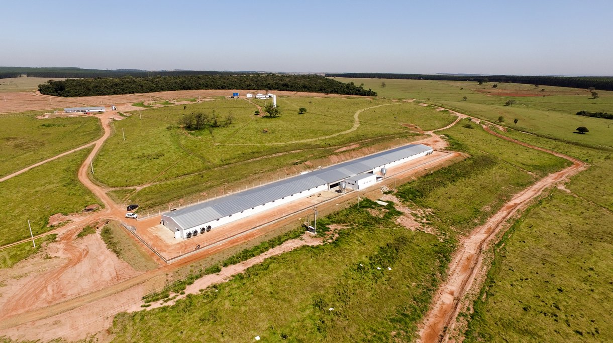 brazil new GGP farm