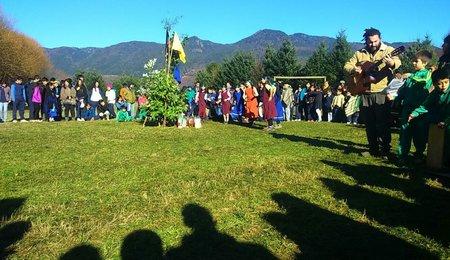 Chile Community 8