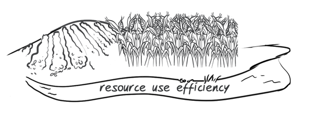 Hypor drawing resource efficiency