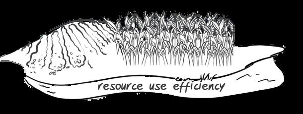 Hypor drawing resource efficiency