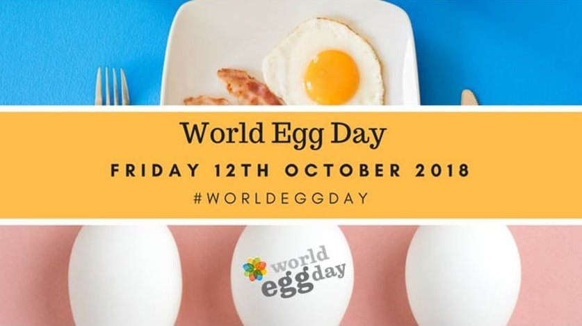 World egg day photo