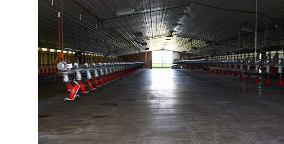 barn_cleaning.png