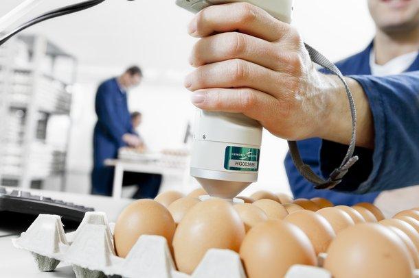 egg quality.jpg