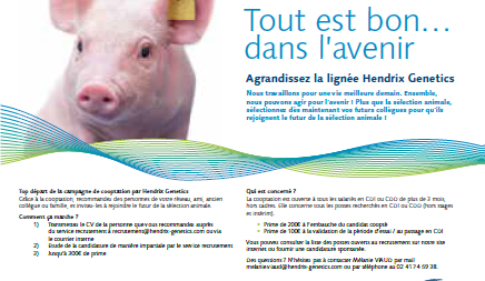 pig a3 poster.png