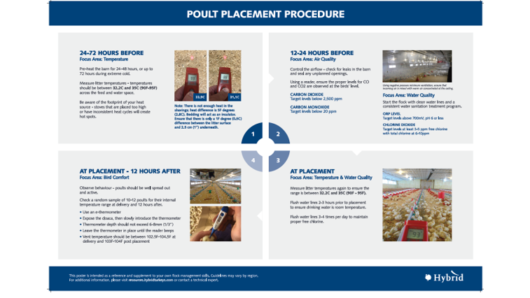 poult placement poster